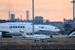 tsubasa0624さんが、羽田空港で撮影したノエビア B300の航空フォト(飛行機 写真・画像)