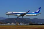 Fly!ゴン太さんが、高知空港で撮影した全日空 737-881の航空フォト(写真)