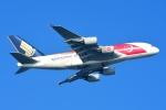 RUSSIANSKIさんが、シンガポール・チャンギ国際空港で撮影したシンガポール航空 A380-841の航空フォト(飛行機 写真・画像)
