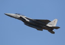 SHIKIさんが、新田原基地で撮影した航空自衛隊 F-15DJ Eagleの航空フォト(写真)