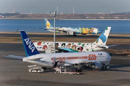 makotomaticさんが、羽田空港で撮影した全日空 767-381/ERの航空フォト(写真)
