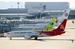 ハピネスさんが、関西国際空港で撮影した深圳航空 737-8ALの航空フォト(飛行機 写真・画像)