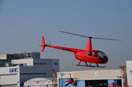 ヘリオスさんが、東京ヘリポートで撮影した日本個人所有 R44 IIの航空フォト(飛行機 写真・画像)