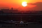 かみゅんずさんが、羽田空港で撮影した日本航空 777-346/ERの航空フォト(写真)