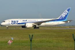 jun☆さんが、クアラルンプール国際空港で撮影した全日空 787-8 Dreamlinerの航空フォト(飛行機 写真・画像)