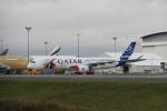りさきちさんが、トゥールーズ・ブラニャック空港で撮影したエアバス A350-941XWBの航空フォト(写真)