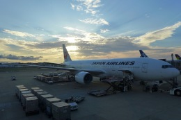 toekneeさんが、福岡空港で撮影した日本航空 777-246の航空フォト(飛行機 写真・画像)