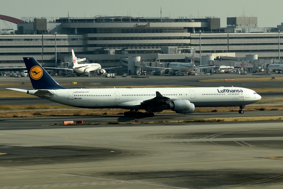 tsubasa0624さんのルフトハンザドイツ航空 Airbus A340-600 (D-AIHE) 航空フォト