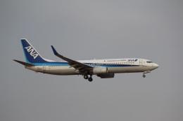 ヴェイパーさんが、成田国際空港で撮影した全日空 737-881の航空フォト(飛行機 写真・画像)