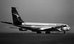ハミングバードさんが、名古屋飛行場で撮影したカンタス航空 707-338Cの航空フォト(飛行機 写真・画像)