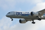 小弦さんが、ノーマン・Y・ミネタ・サンノゼ国際空港で撮影した全日空 787-8 Dreamlinerの航空フォト(写真)