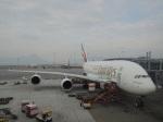シフォンさんが、香港国際空港で撮影したエミレーツ航空 A380-861の航空フォト(飛行機 写真・画像)