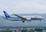 じーく。さんが、台北松山空港で撮影した全日空 787-8 Dreamlinerの航空フォト(飛行機 写真・画像)