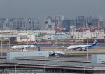 りさきちさんが、羽田空港で撮影した全日空の航空フォト(写真)