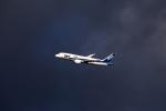 りさきちさんが、羽田空港で撮影した全日空 787-8 Dreamlinerの航空フォト(写真)