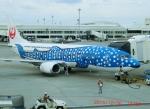 tohkuno563さんが、那覇空港で撮影した日本トランスオーシャン航空 737-4Q3の航空フォト(飛行機 写真・画像)