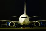 りさきちさんが、羽田空港で撮影した日本航空の航空フォト(写真)