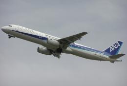 なぁちゃんさんが、関西国際空港で撮影した全日空 A321-131の航空フォト(飛行機 写真・画像)