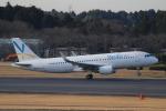 れえどんさんが、成田国際空港で撮影したバニラエア A320-216の航空フォト(写真)