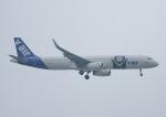 じーく。さんが、台湾桃園国際空港で撮影したV エア A321-231の航空フォト(飛行機 写真・画像)
