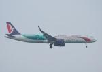 じーく。さんが、台湾桃園国際空港で撮影したマカオ航空 A321-231の航空フォト(飛行機 写真・画像)