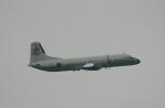 ありさんが、名古屋飛行場で撮影した海上自衛隊 YS-11A-404M-Aの航空フォト(飛行機 写真・画像)