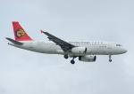 じーく。さんが、台湾桃園国際空港で撮影したトランスアジア航空 A320-232の航空フォト(飛行機 写真・画像)