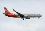 じーく。さんが、台湾桃園国際空港で撮影した海南航空 737-84Pの航空フォト(飛行機 写真・画像)