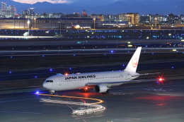 wtb11_ksさんが、羽田空港で撮影した日本航空 767-346/ERの航空フォト(飛行機 写真・画像)