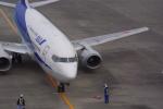 Airfly-Superexpressさんが、宮崎空港で撮影したANAウイングス 737-54Kの航空フォト(写真)