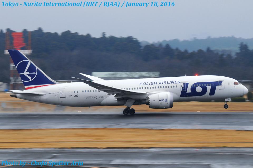 Chofu Spotter AriaさんのLOTポーランド航空 Boeing 787-8 Dreamliner (SP-LRD) 航空フォト