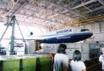 奈良ン児さんが、成田国際空港で撮影したニッポン・ミニチュア・ボールベアリング DC-10-30CFの航空フォト(写真)
