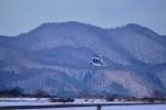 函館空港 - Hakodate Airport [HKD/RJCH]で撮影された海上保安庁 - Japan Coast Guardの航空機写真