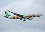 じーく。さんが、台湾桃園国際空港で撮影したエバー航空 A330-302Xの航空フォト(写真)