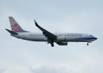 じーく。さんが、台湾桃園国際空港で撮影したチャイナエアライン 737-809の航空フォト(飛行機 写真・画像)