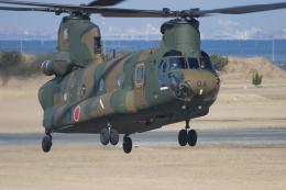 KAzHKDさんが、木更津飛行場で撮影した陸上自衛隊 CH-47Jの航空フォト(飛行機 写真・画像)