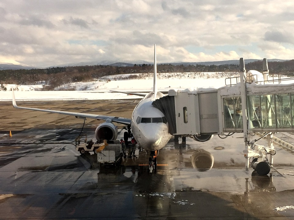 tsubasa0624さんの日本航空 Boeing 737-800 (JA340J) 航空フォト
