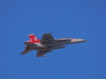 まさおみんさんが、厚木飛行場で撮影したアメリカ海軍 F/A-18F Super Hornetの航空フォト(写真)