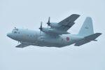 うめやしきさんが、厚木飛行場で撮影した海上自衛隊 C-130Rの航空フォト(写真)