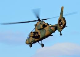 Peko mamaさんが、入間飛行場で撮影した陸上自衛隊 OH-1の航空フォト(飛行機 写真・画像)