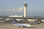 ありさんが、中部国際空港で撮影した全日空 A321-131の航空フォト(写真)