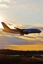 あぽやんさんが、成田国際空港で撮影したタイ国際航空 A380-841の航空フォト(写真)