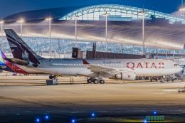 pinama9873さんが、関西国際空港で撮影したカタール航空 A330-202の航空フォト(飛行機 写真・画像)