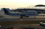 奈良ン児さんが、関西国際空港で撮影したカタール航空 A330-202の航空フォト(写真)