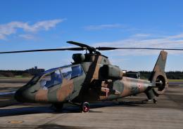 チャーリーマイクさんが、入間飛行場で撮影した陸上自衛隊 OH-1の航空フォト(飛行機 写真・画像)