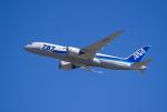 Dream Cabinさんが、成田国際空港で撮影した全日空 787-8 Dreamlinerの航空フォト(飛行機 写真・画像)