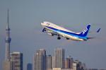 take_2014さんが、羽田空港で撮影した全日空 737-881の航空フォト(写真)
