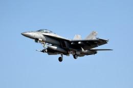 tsubasa0624さんが、厚木飛行場で撮影したアメリカ海軍 F/A-18F Super Hornetの航空フォト(飛行機 写真・画像)