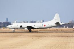 tsubasa0624さんが、厚木飛行場で撮影した海上自衛隊 P-3Cの航空フォト(写真)