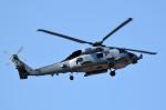 tsubasa0624さんが、厚木飛行場で撮影したアメリカ海軍 MH-60A (S-70A)の航空フォト(写真)